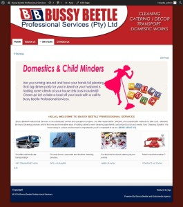 Bussy Beetle Professional Services » Just another WordPress site_20140725193443